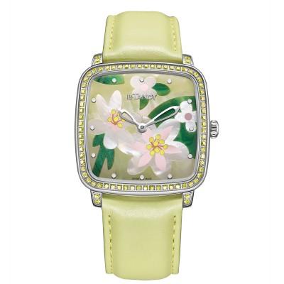 Spring's Rieger Begonia